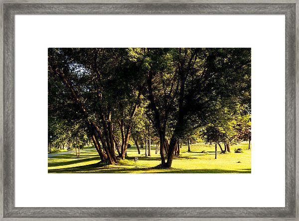 Autumn Morning Stroll Framed Print