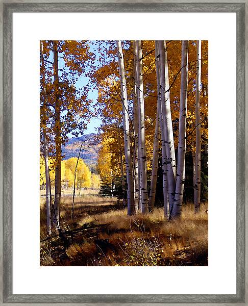 Autumn Paint Chama New Mexico Framed Print