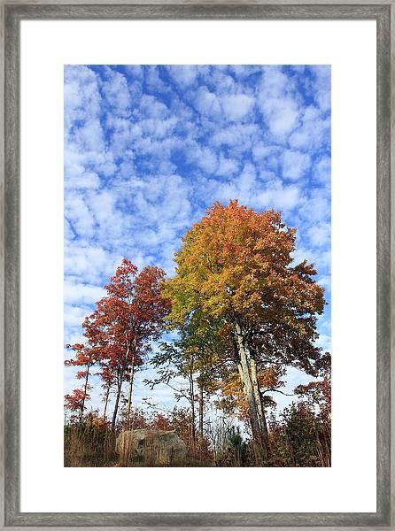 Autumn Perfection Framed Print