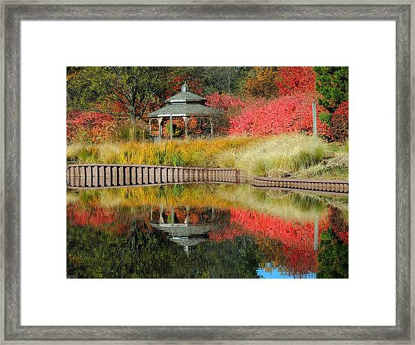 Autumn Reflections Framed Print by Teresa Schomig