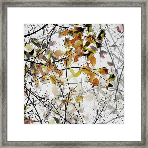 Autumn Song Framed Print by Gilbert Claes