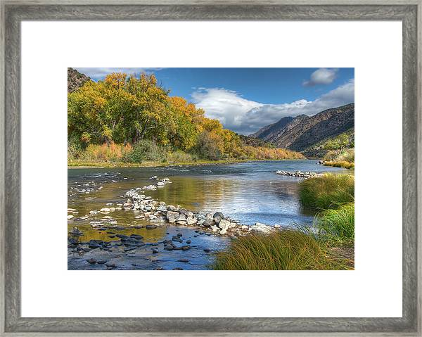 Framed Print featuring the photograph Autumn Stance by Britt Runyon