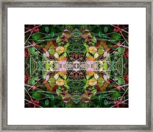 Autumn Symmetry Framed Print