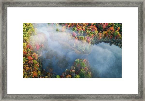 Autumn Symphony I Framed Print