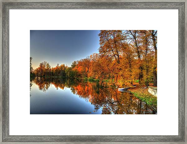 Autumn Trees Over A Pond In Arkadia Park In Poland Framed Print