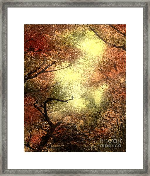 Autumn Trees With Light Shining Through Framed Print