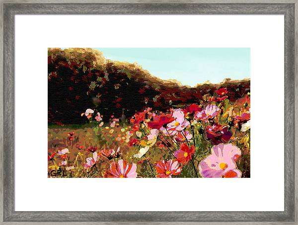 Framed Print featuring the painting Autumn Wildflowers Maryland Original Art by G Linsenmayer