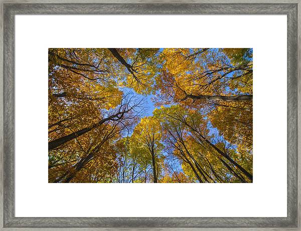 Autumn's Rooftop Framed Print