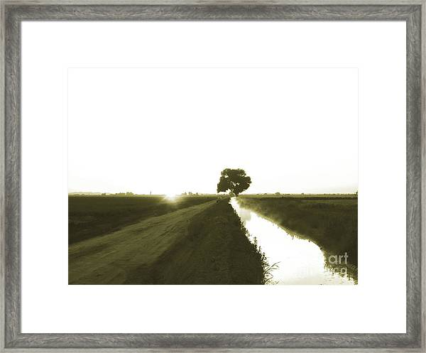 Awaken To A New Day Framed Print by Cheryl Wood