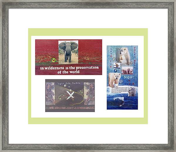 Awareness Group  Framed Print