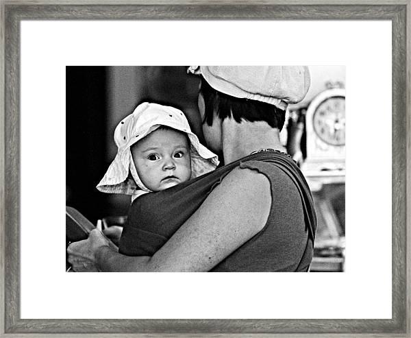Baby Blue Bonnet Framed Print