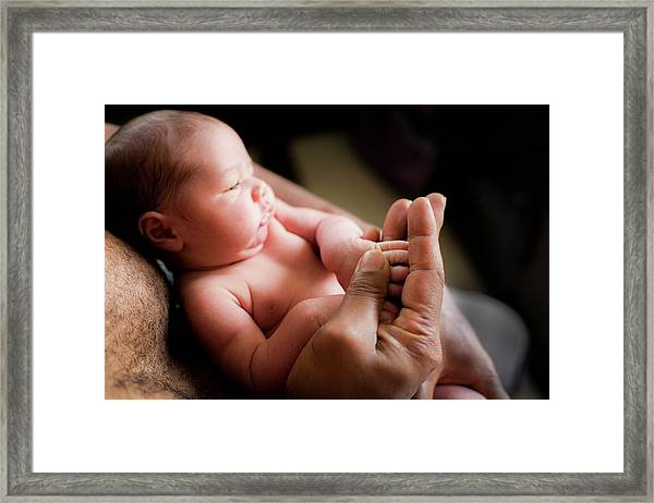 Baby Boy Holding His Father's Hand Framed Print by Samuel Ashfield