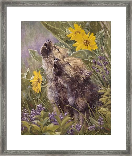 Baby Wolves Howling Framed Print