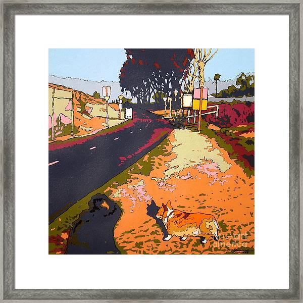 Back Bay Trail #567 Framed Print by Max Yamada