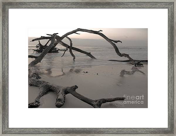 Framed Print featuring the photograph Back From The Edge by Glenda Wright
