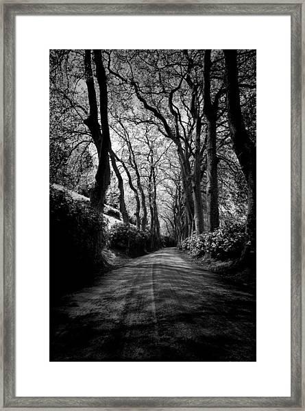 Back Road East 2 Framed Print