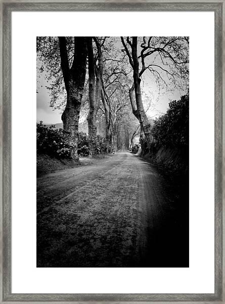 Back Road East Framed Print