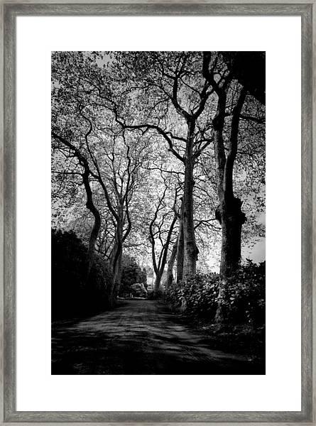 Back Road West Framed Print