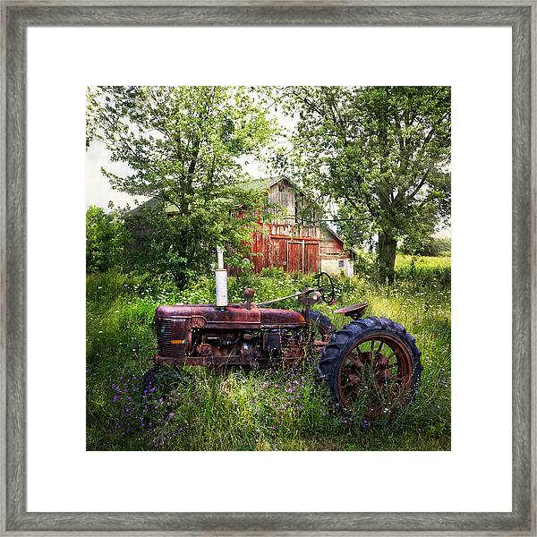 Back To Nature Framed Print