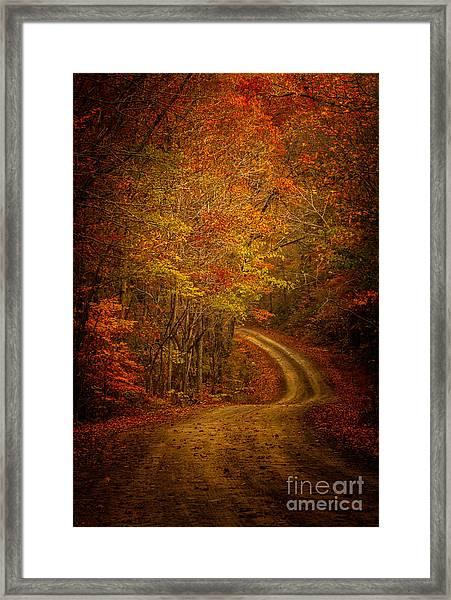 Backroad Color Framed Print