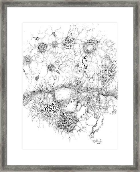 Bacteriophage Ballet Framed Print