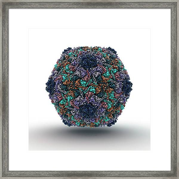 Bacteriophage Particle Framed Print by Animate4.com/science Photo Libary