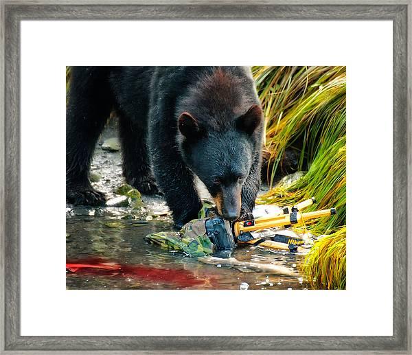 Bad Day For Nikon Framed Print