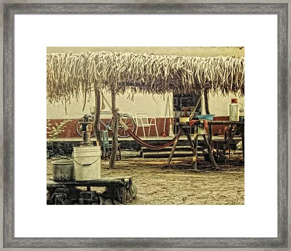 Bakyard Framed Print