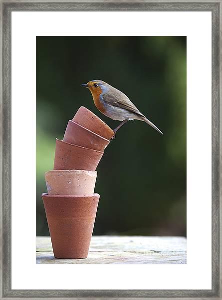 Its A Balancing Act Framed Print