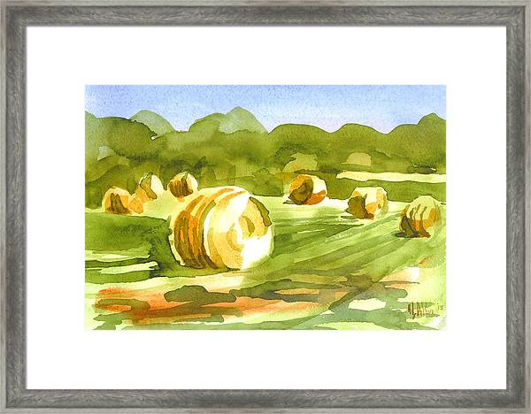 Bales In The Morning Sun Framed Print