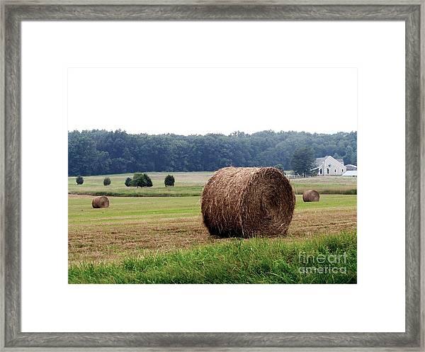 Bales In Solebury Framed Print