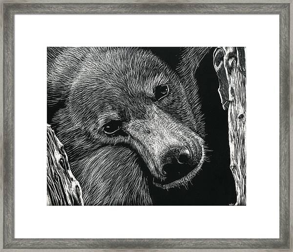Baloo Framed Print
