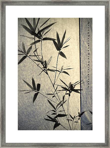 Bamboo Leaves Framed Print