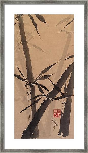 Bamboo Study #1 On Tagboard Framed Print