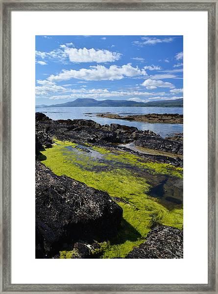 Bantry Bay In August Framed Print by Phil Darby