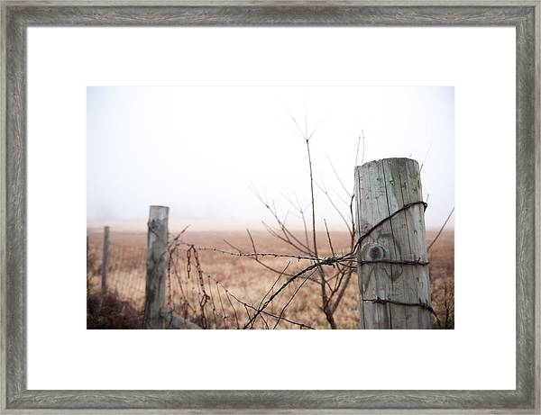 Barbed Wire Fence In The Fog Framed Print
