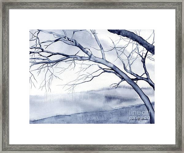 Bare Trees Framed Print
