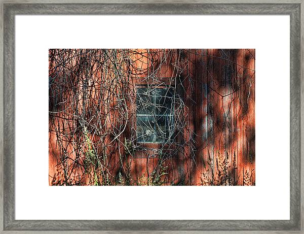 Framed Print featuring the photograph Barn Side by David Armstrong