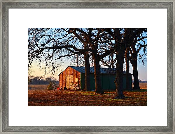 Barn Under Oak Trees Framed Print