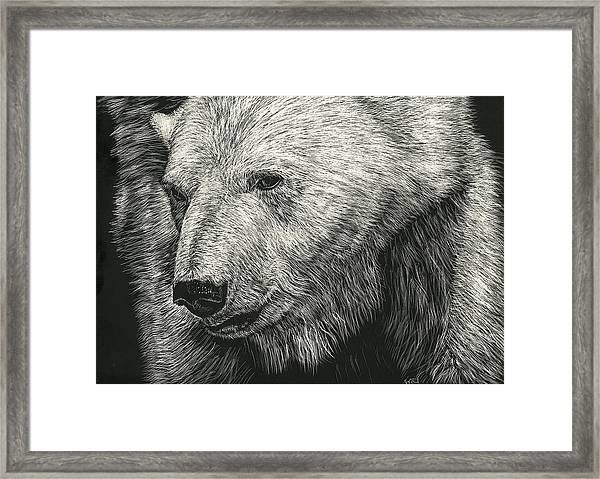 Barnicles Framed Print