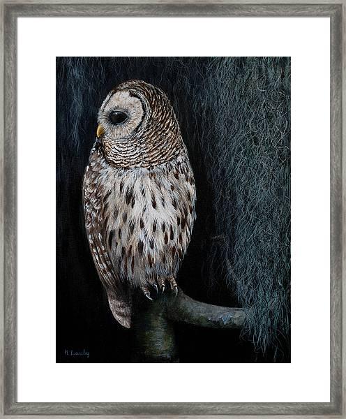 Barred Owl On A Mossy Perch Framed Print