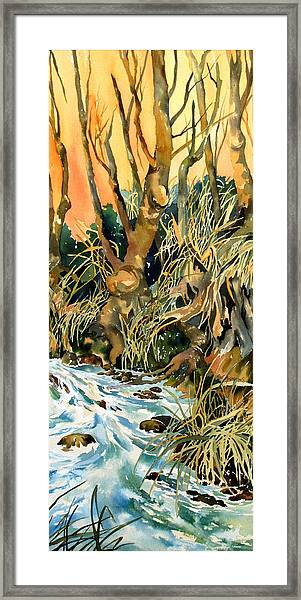 Basket Weave Grasses 1 Framed Print by Rae Andrews