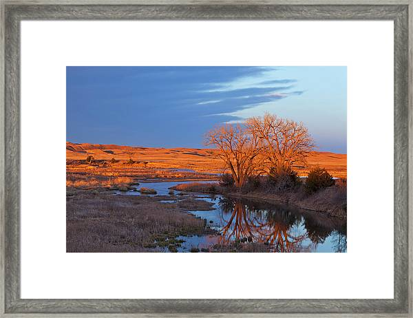 Bathed In Sunset Light The Calamus Framed Print