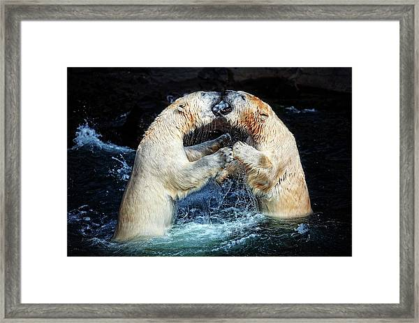 Battle & Kisses .... Framed Print
