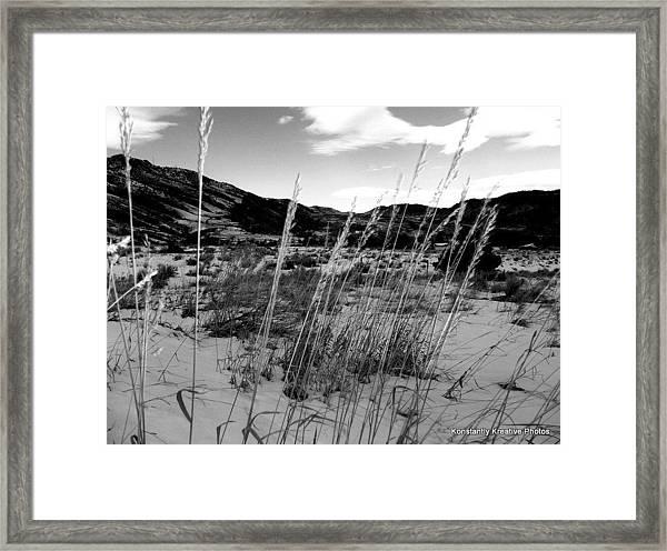 Be Quiet Be Still Framed Print by Misty Herrick