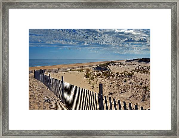 Beach At Cape Henlopen Framed Print
