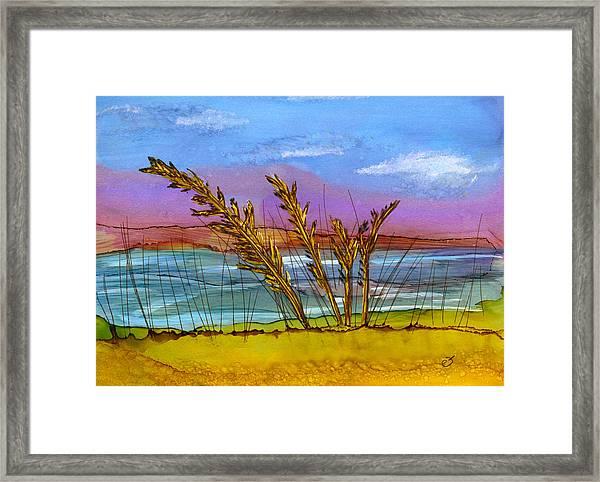 Beach Berm Framed Print