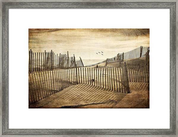 Beach Shadows Framed Print