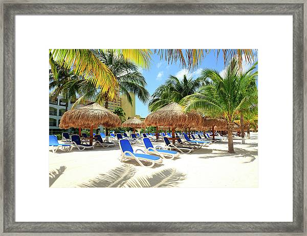 Beach With Palm Trees And Lounge Chairs Framed Print