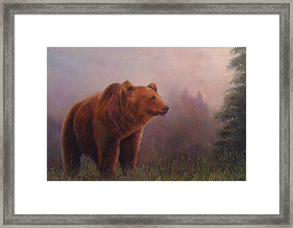 Bear In The Mist Framed Print